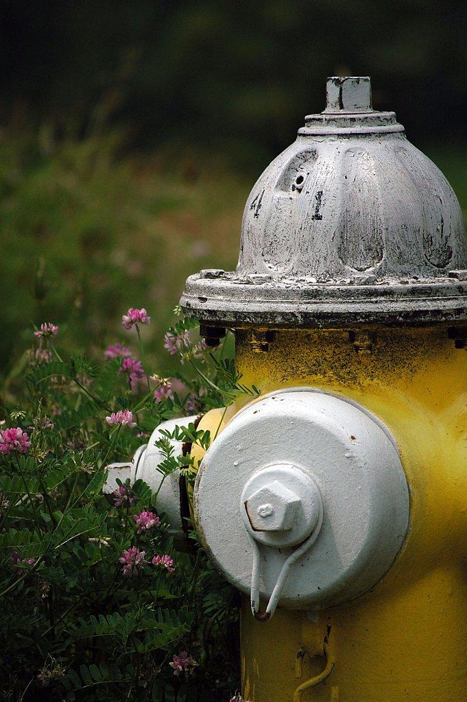 hydrant2-small.jpg
